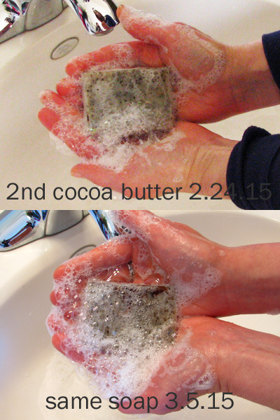 This soap was made 2.17.15 with 25% tallow and 5% cocoa butter