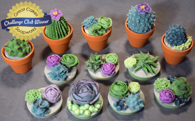 Soapy Succulents by ChezHelene